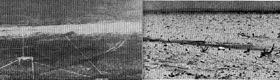 The Bakersfield Valley event occurred in an area unaccustomed to violent tornadoes. At left, aerial view of the streak of severe ground scouring. At right, ground view of the disturbed earth vacant of all vegetation. (Image from Storm Data, June 1990).