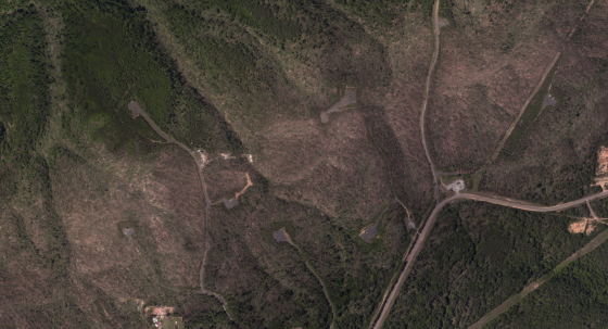After exiting the Tuscaloosa metropolitan area, the tornado plowed through 35 miles of unpopulated forestland. Aerial imagery of tree damage suggests that the tornado maintained EF4+ intensity and widened to over a mile in width. Very few tornadoes maintain peak intensity for more than a few miles, nevertheless for
