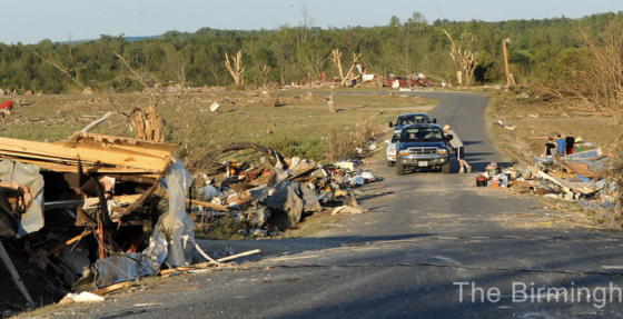 Debarked trees and partially scoured vegetation highlight the tornado's path through a rural area northeast of Rainsville. (The Birmingham News)