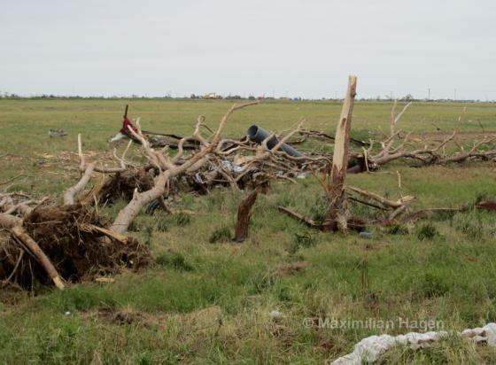 Heavy tree damage just north of OKC West.