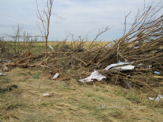 Tree damage just south of the I-40 near the OKC West Livestock complex.